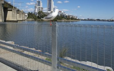 CAR PARK BARRIERS – SAFETY FOR CARS AND PEOPLE
